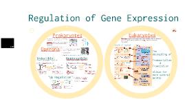 Copy of AP Bio-  Molecular Genetics 3: Regulation of Gene Expression