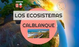 CALBLANQUE, EL MONTE DE LAS CENIZAS, LA PEÑA DEL ÁGUILA
