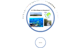 Copy of Biology Chapter 4 Section 2 What Shapes an Ecosystem?