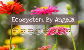 Ecosystem By Angela