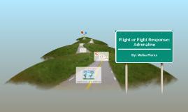 Flight or Fight Response: Adrenaline
