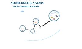 Copy of Neurologische Niveaus