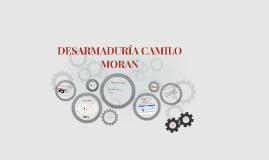 DESARMADURÍA CAMILO MORAN