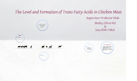 The Level and Formation of Trans Fatty Acids in Chicken Meat