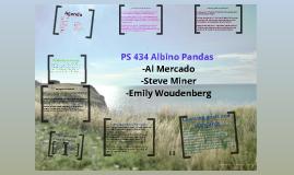 PS 434 Albino Pandas