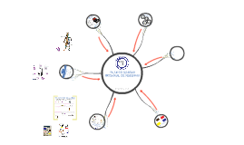 Copy of Plan de Manejo Integral de Residuos