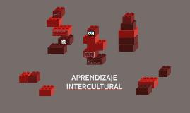 Copy of APRENDIZAJE INTERCULTURAL