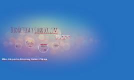 Copy of Didactica y Curriculum