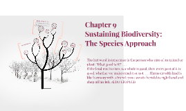 Sustaining Biodiversity the species approach