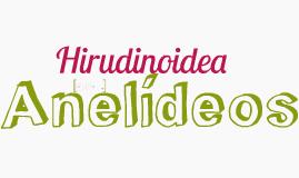 Hirudinoidea