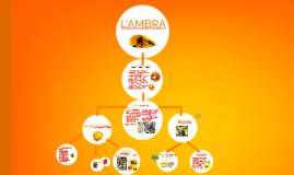 L'AMBRA