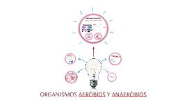 ORGANISMOS AERÒBIOS Y ANAERÒBIOS