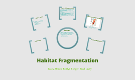 Copy of Habitat Fragmentation