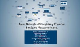 Áreas Naturales Protegidas y Corredor Biológico Mesoamerican