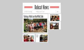 Bobcat News