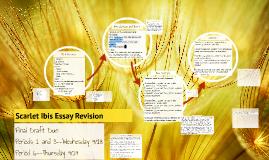 Scarlet Ibis Essay Revision