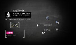 Auditoria Lighthouse - Estudio Danza