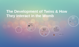 The Development of Twins & How They Interact in the Womb