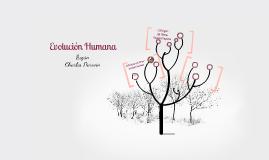 Evolución y Desarrollo Según Charles Darwin