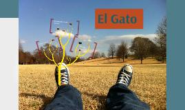 Copy of Zona Centro: El Gato