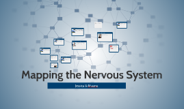 Mapping the Nervous System