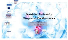 Nutrición Perinatal y Programación metabolica