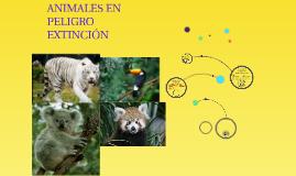 ANIMALES EN PELIGRO