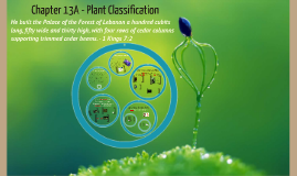 Chapter 13A - Plant Classiciation