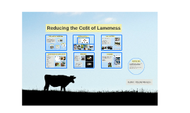 Reducing the Co$t of Lameness
