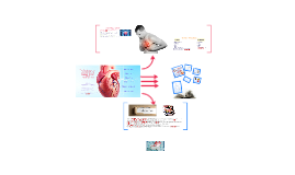 The Cardiovascular Disease (CVD) occurrence risk assessment
