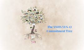 The SNHS YES-O Commitment Tree