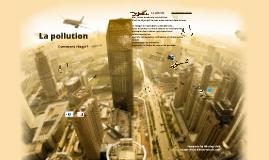 Présentation orale français: la pollution