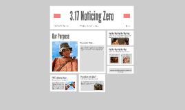3.17 Noticing Zero