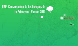 PAP- Conservación de los bosques de la Pimavera- Verano 2014