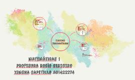 Ximena Capetillo A01422274