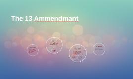 The 13 Ammendmant