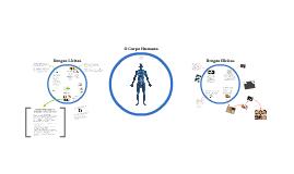 Drogas lícitas e ilícitas - impactos no corpo humano