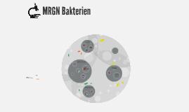 Copy of MRGN Bakterien