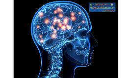 Defesa de Tese -  Papel da Microglia na Disfunção Cerebral