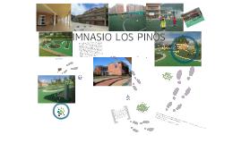 GIMNASIO LOS PINOS