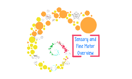Sensory and Fine Motor Overview