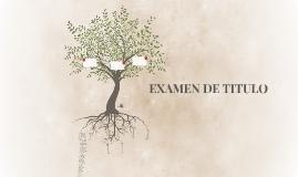 EXAMEN DE TITULO