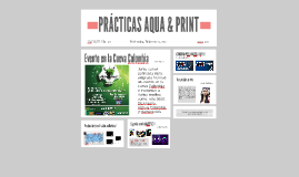 PRACTICAS AQUA & PRINT