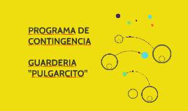 PROGRAMA DE CONTINGENCIA