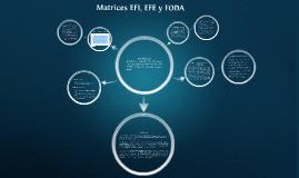 Copy of Matrices EFI, EFE y FODA.