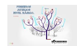 PRIMEROS AUXILIOS - INOXIDABLES DE SAN LUIS