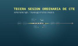 TECERA SESION ORDINARIA DE CTE