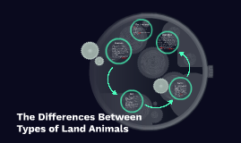 The Difference Between Types of Land Animals