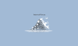 Internal Forces