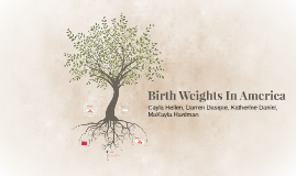 Birth Weights In America
